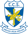 Tallaght Community School